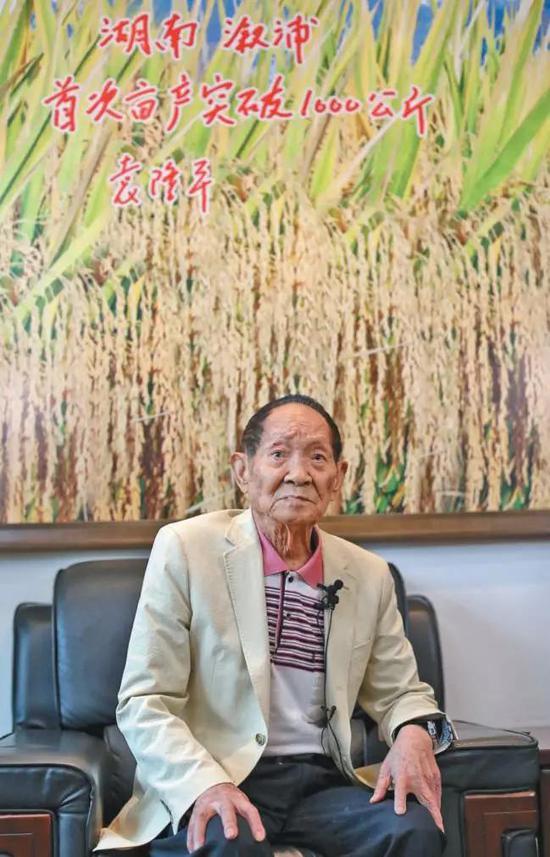 ▲10月12日,袁隆平在国家杂交水稻工程技术研究中心会客厅内接受记者采访。新京报记者 王飞 摄