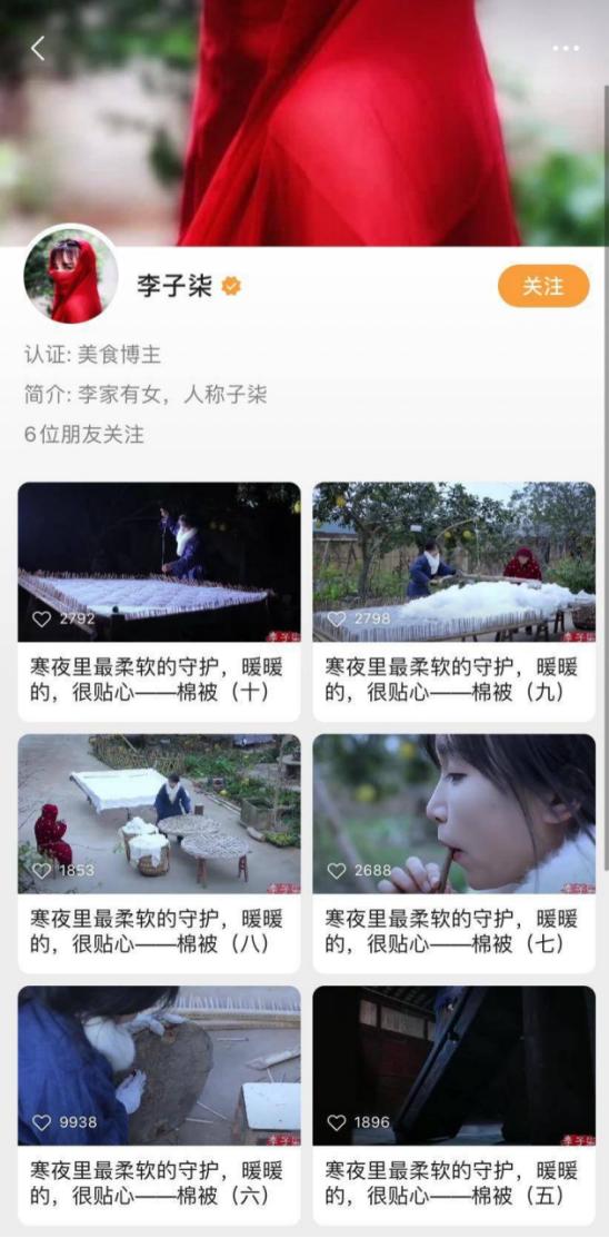 李子柒视频号主页