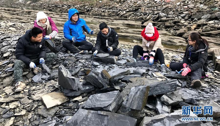 """2018年,西北大学地质学系的师生在湖北省宜昌市丹水河进行""""清江生物群""""化石挖掘。新华社发(西北大学供图)"""