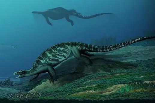 始喙龟生态回复复兴图。画图:陈瑜,来源:中国科学院古脊椎动物与古人类研讨所