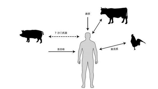 图片改编自参考文献9