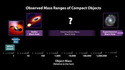 致密天体根据质量的分类,图片来源:NASA