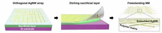 杂化纳米薄膜的制备过程 图片来源:论文,Science Advances