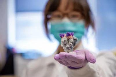 向宇菲在手上展示纳米抗体(紫色)与新冠病毒刺突蛋白(灰色)相结合的3D打印模型(图片来源:参考资料[2];Credit:UPMC)