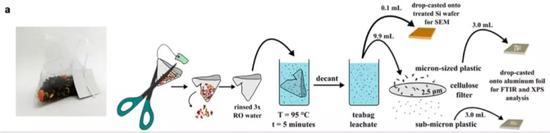 检测空茶包产生微塑料的实验设计流程。