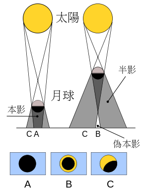 A 本影区出现日全食;B 伪本影区出现日环食;C 半影区出现日偏食。来源:wikipedia