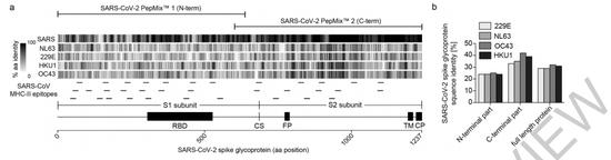 新冠病毒与几种常见冠状病毒的刺突蛋白序列有很高的相似性