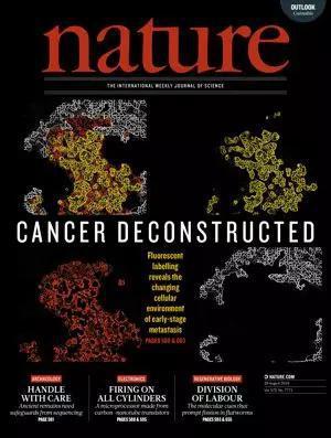 ▲今日《自然》封面刊登了一项关于癌症研究的重要突破(图片来源:参考资料[1])