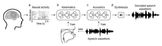 ▲脑机接口实现语音合成的图示(?#35745;?#26469;源:参考资料[1])