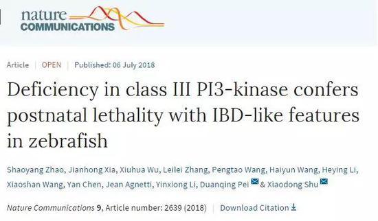 中国科学家用斑马鱼找出人类拉肚子的原因