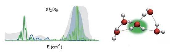 4个水分子围住 W 构成5个水分子的分子团(右)。它的光谱(绿线)和一滴水的光谱(深蓝色暗影)靠近,但并未完美符合(参看峰值方位)。 来自论文