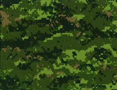 北约的研究发现,CADPAT TW 是适用于热带和亚热带地区的最有效的迷彩。