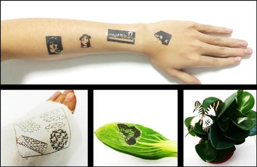 在人体、丝绸、蔬菜、蝴蝶翅膀上的石墨烯电子皮肤