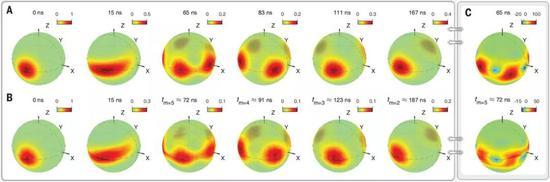 图3:多组分原子薛定谔猫态在动态过程中产生20个量子位元