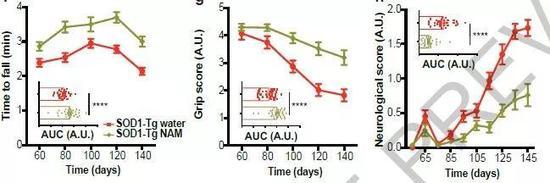 ▲补充烟酰胺(NAM),ALS小鼠的运动表现提升(图片来源:参考资料[1])