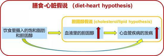 图1:膳食-心脏假说和胆固醇假说的关系