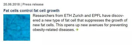 一群脂肪细胞,竟能控制其他脂肪细胞的生长