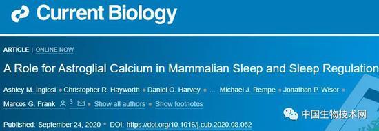 <b>颠覆百年经典理论!为什么要睡觉?星形胶质细胞或才是解谜关键</b>