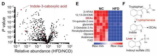 ▲在。高脂饮食的条件下,I3CA是外达量隐微削减的肠道细菌代谢产物,它和吲哚都是色氨酸代谢衍生物(图片来源:参考原料[1])