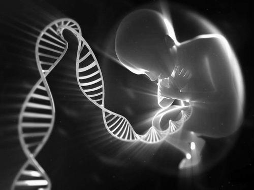 基因编辑婴儿:潘多拉魔盒不答容易掀开
