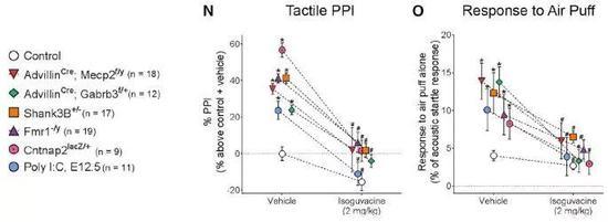 ▲在六种不同分子机制的ASD模型小鼠中,isoguvacine都起到了缓解触碰过度反应的效果(图片来源:参考资料[1])