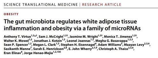 脂肪吃多也不用怕?最新研究为肥胖人群带来福音!