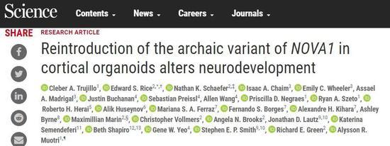 今日《科学》:只要一个基因变异,就让现代人的大脑与众不同?