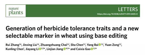 ▲今年早些時候,學術經緯團隊報道了研究人員們對小麥基因組的單堿基編輯工作(圖片來源:Nature Plants)
