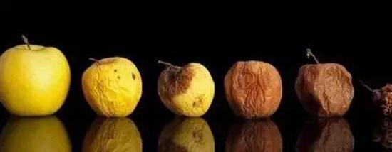▲腐烂水果还能吃吗?(图片来自网络)