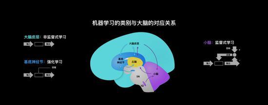论AI发展三境:神,神经,神经病