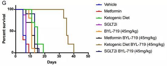 生酮联合PI3K抑制剂(棕)生存期大幅度延长