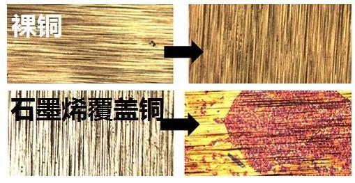 图3 石墨烯涂层加速金属铜的腐蚀过程(裸铜和石墨烯覆盖金属铜腐蚀前后的对照)