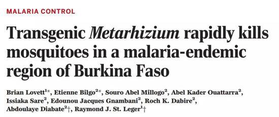 什么黑科技这么厉害,不喷杀虫剂不点蚊香,让蚊子一碰就死!
