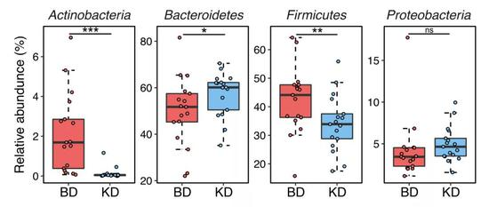 ▲生酮饮食对肠道微生物的影响