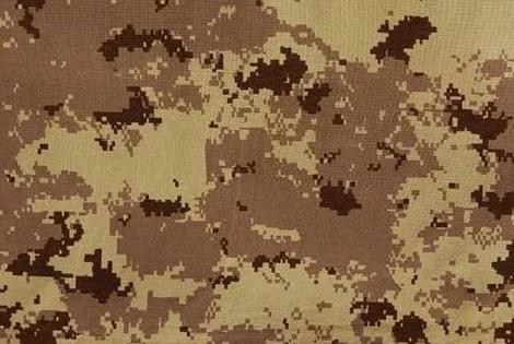 加拿大的数码迷彩图案CADPAT