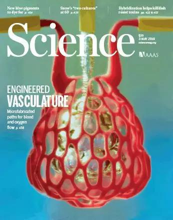 """开天辟地!科学家首次打印出""""会呼吸""""的肺"""