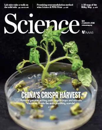 ▲本次特刊也得到了《科學》封面的介紹(圖片來源:《科學》官網;Syngenta Beijing Innovation)