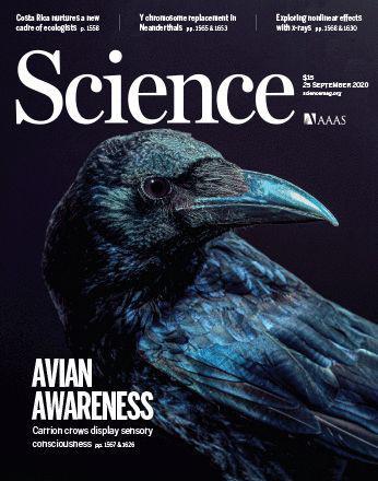 这项研究登上了《科学》封面(图片来源:Science;照片:Photo: Tobias Machts, University of Tübingen)
