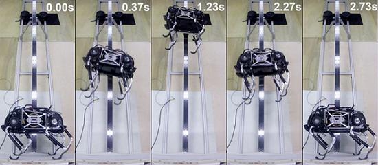 SpaceBok系安全绳进行跳跃试验。图片来源:欧洲航天局