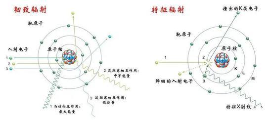 图7 (上)左:韧致辐射;右:特征辐射