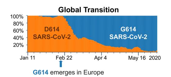 2月下旬首,一栽变异的新冠病毒株(G614 SARS-Cov-2,蓝色)最先席卷全球