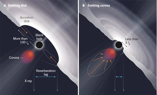 """黑洞""""吃星星""""后吸积盘和光冕发生的变化"""