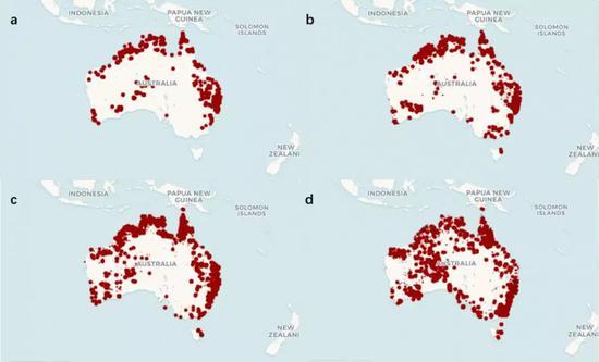 澳大利亚山火于11月1日(a),11月14日(b),12月5日(c),12月26日(d)的分布情况。(图片来源:BBC News)