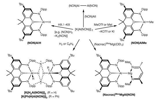 ▲[K{Al(NON)}]2行为亲核试剂参与众栽迥异的逆答(图片来源:参考原料[1])