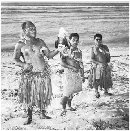 瑙鲁岛民利用军舰鸟帮忙捕鱼