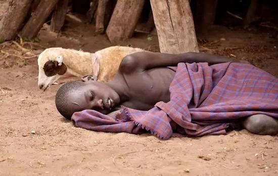 每年拯救50万人的性命,人类离消灭疟疾还有多远?