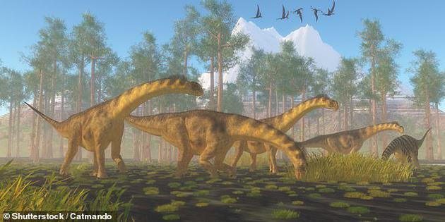 巨大的胃石意味着它们必须被大型动物如恐龙吞食和运输。图为:一群圆顶龙,研究人员认为可能是负责运送石头的物种之一。