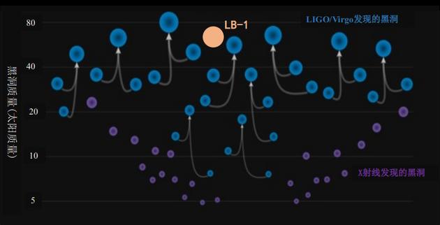图四 LB-1和引力波并合事件、X射线方法发现的黑洞的质量分布