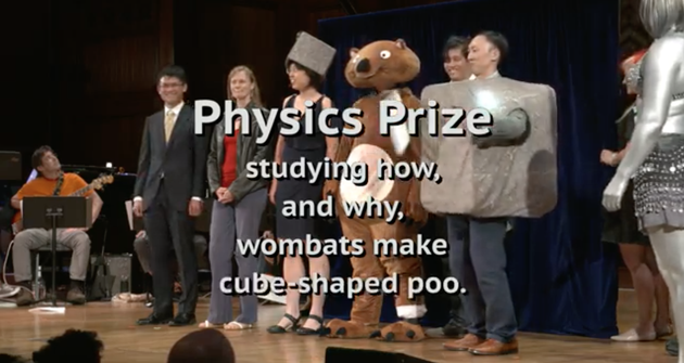 2019搞笑诺贝尔奖揭晓!为什么树袋熊便便是方块的?的照片 - 4
