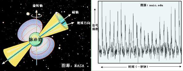 图4:左为脉冲星的结构。黄色椎体是射电信号发射的方向。图片来源于美国国家航空航天局。右为观测到的脉冲信号,来自naic.edu。